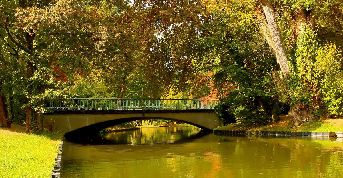 Осенний мостик - Alexander Andronik
