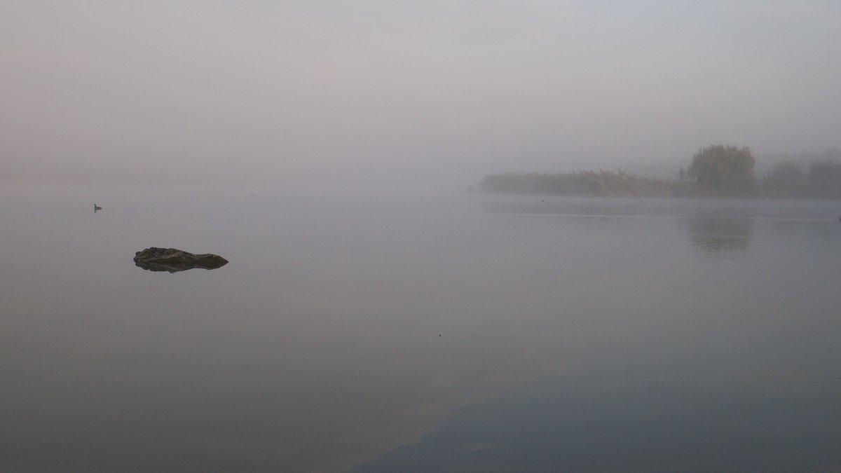 Туман, туман... - Сергей Махонин