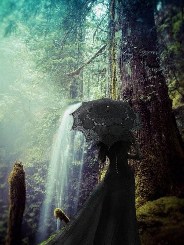 Готеса в лесу - Сергей