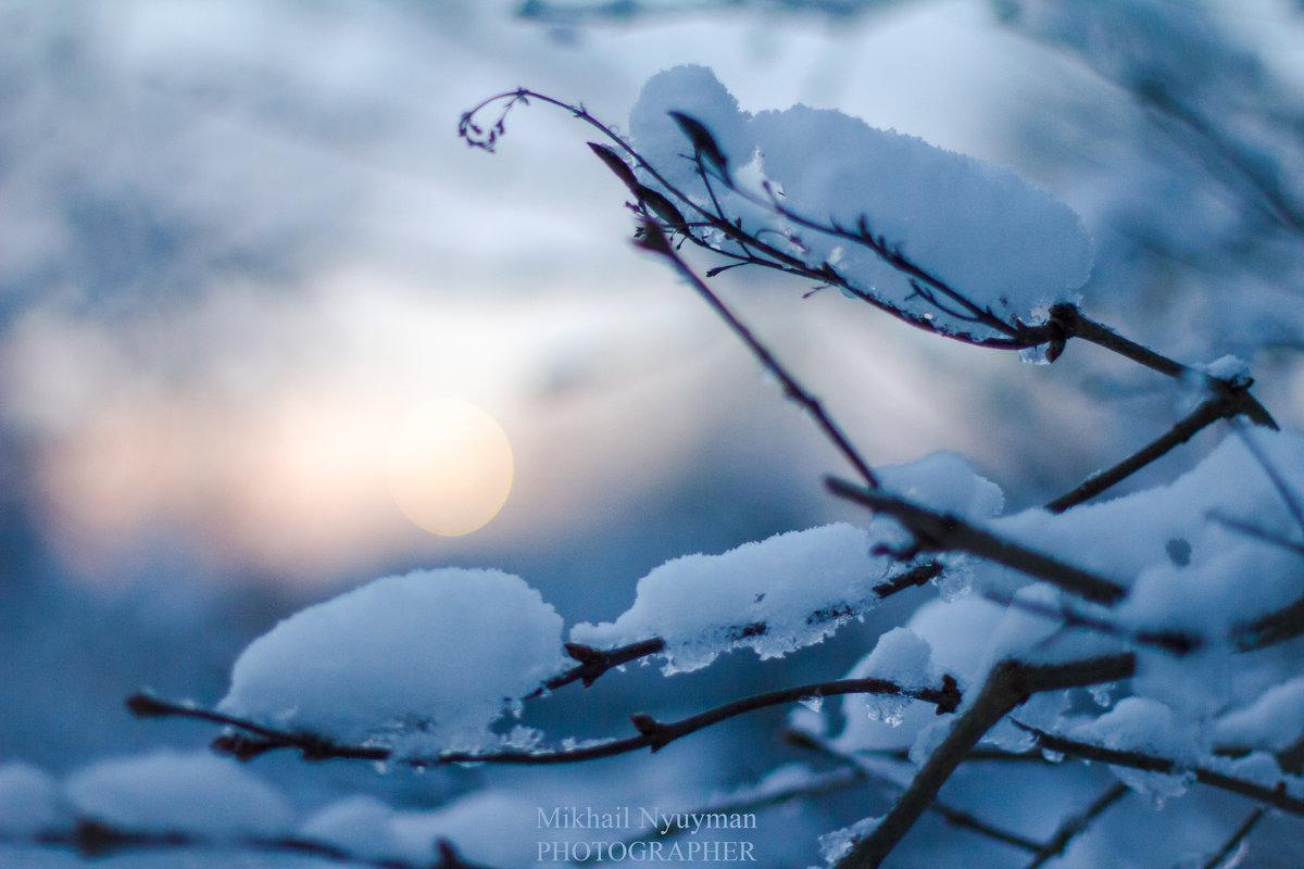 Зима - Михаил