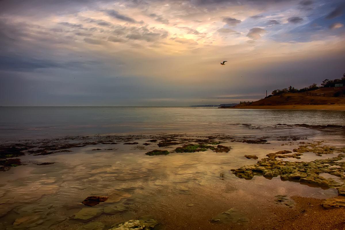 Утро на море - Виктор Мороз