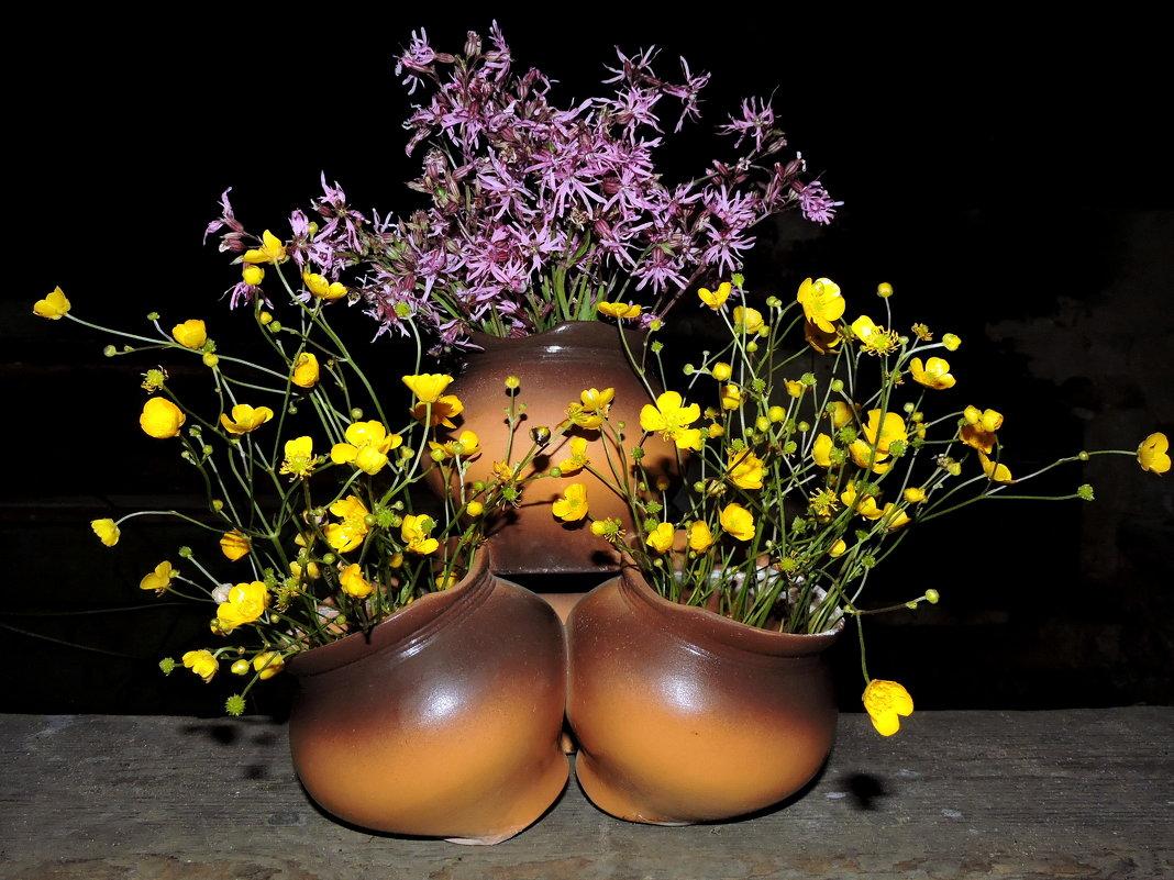 Полевые цветы. - Hаталья Беклова