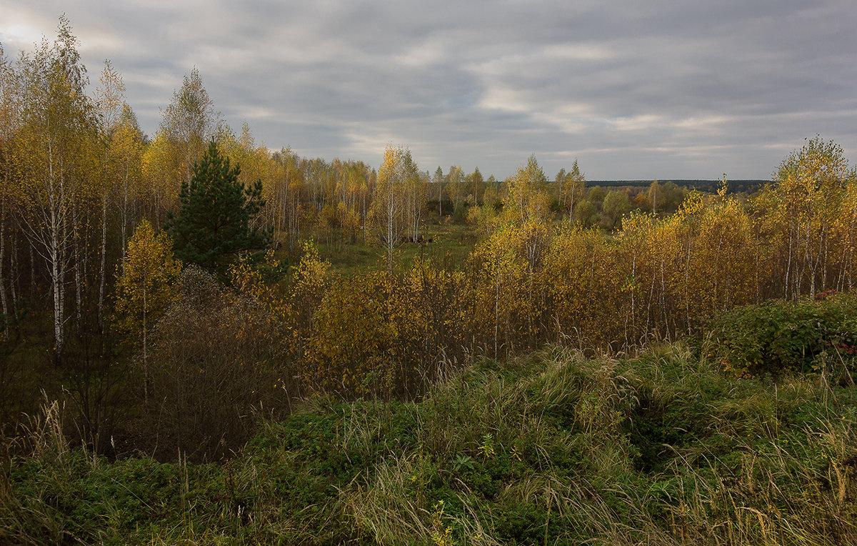 Про осень - Алексей Окунеев