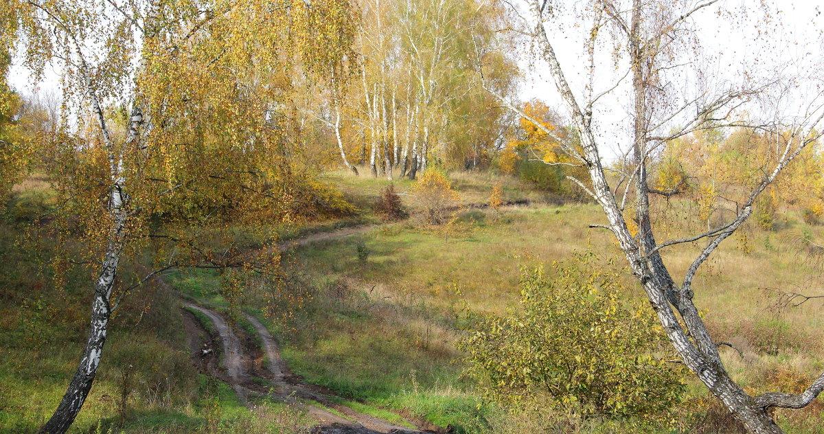 Осенний пейзаж с грунтовой дорогой. - Борис Митрохин