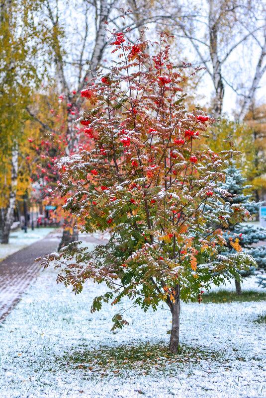 на границе с зимой - Натали Акшинцева