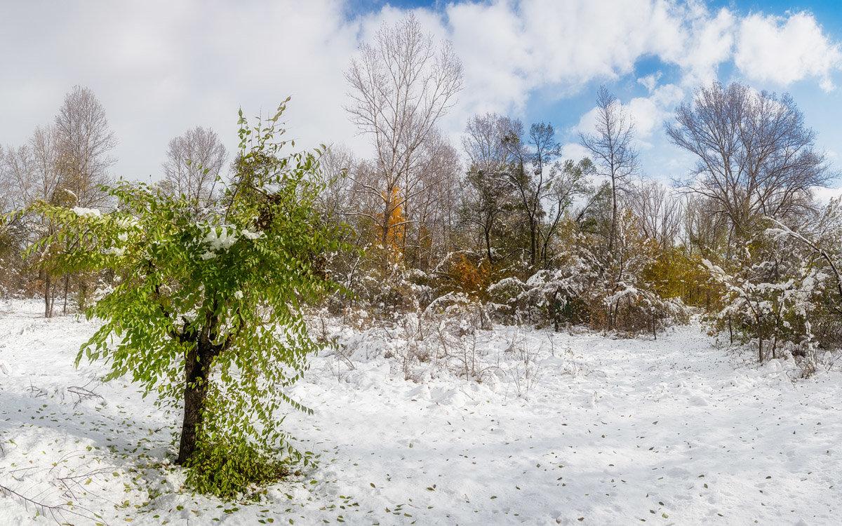 Октябрь. Первый снег. - Евгений Герасименко