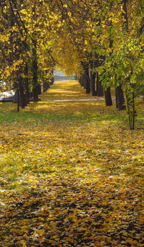 Аллея в осеннем парке - Сергей Тагиров