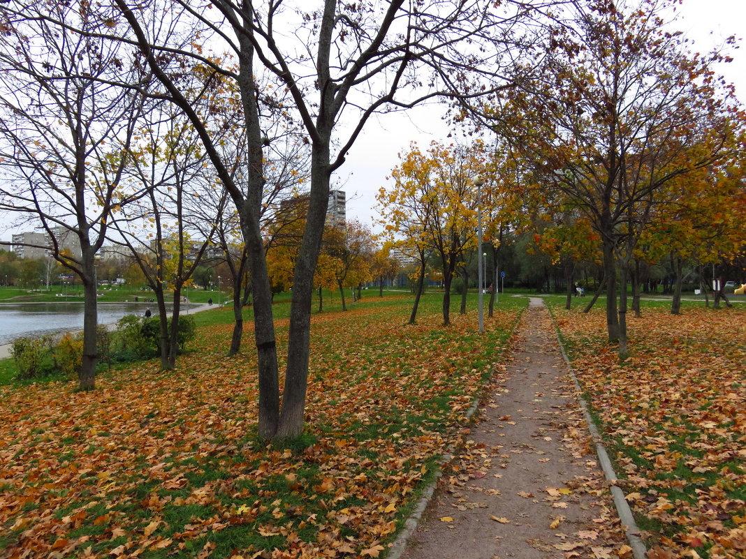 Уже и не золотая осень - Андрей Лукьянов