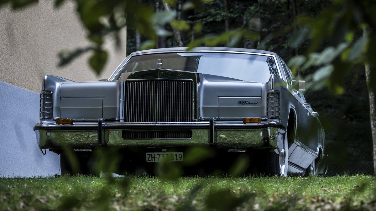 big car - Dmitry Ozersky