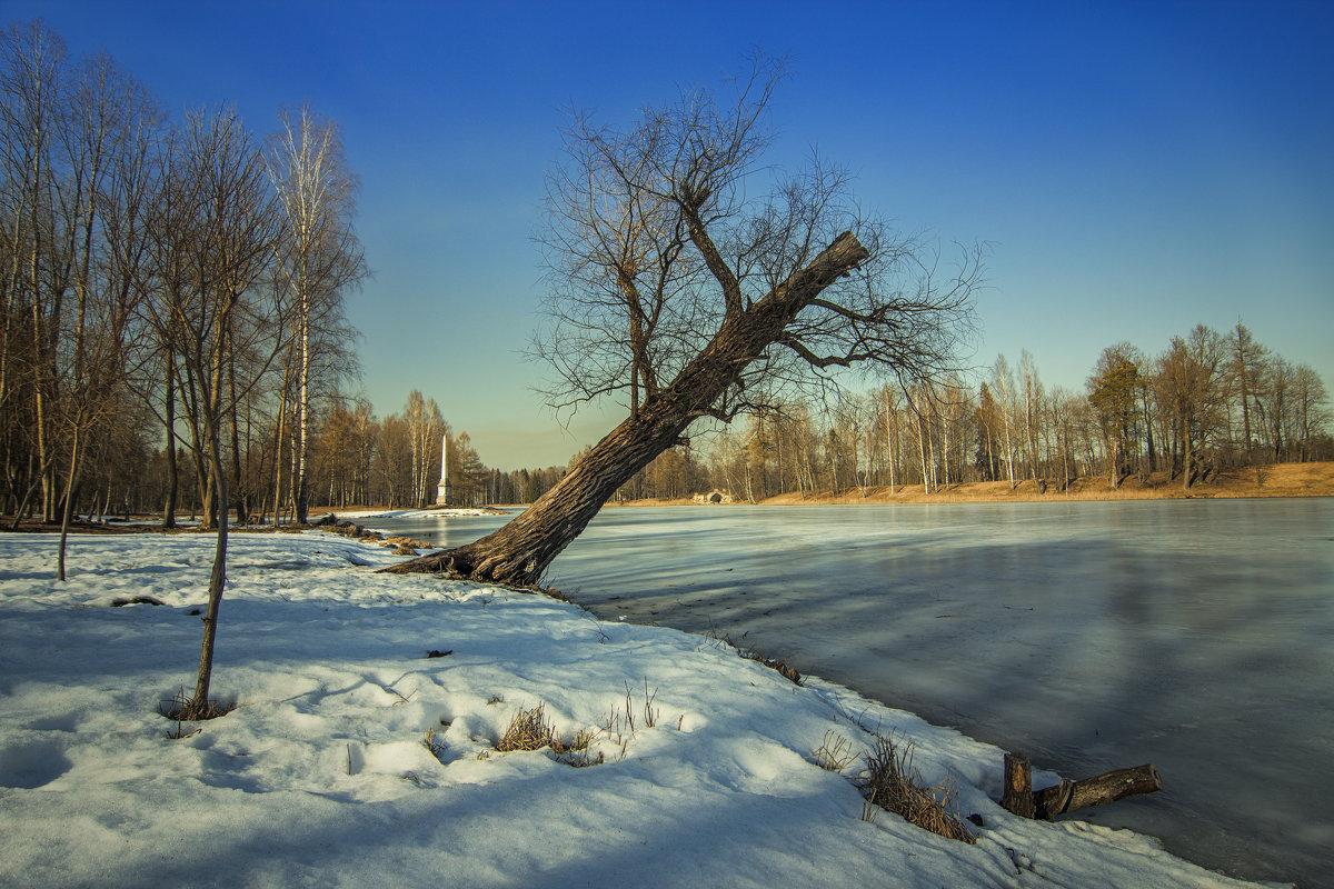 Танец над водой - Наталья Ерёменко