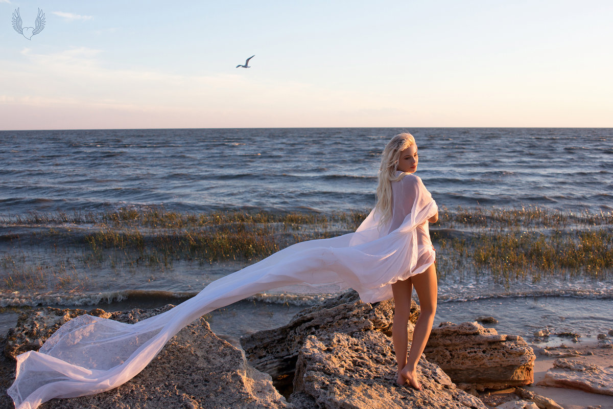 У моря... - Райская птица Бородина