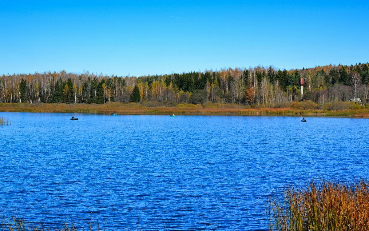 Осенняя рыбалка с лодок - Милешкин Владимир Алексеевич