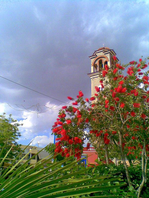 Цветы возле церкви. - Оля Богданович