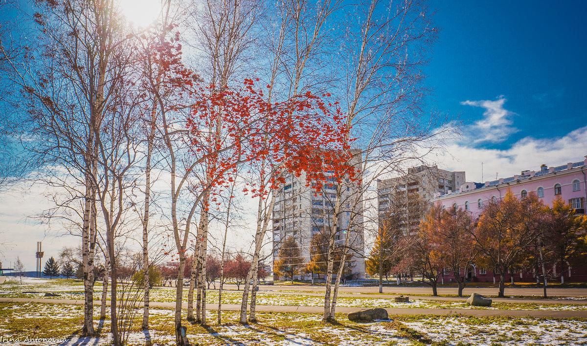 Осенняя сказка! - Ирина Антоновна