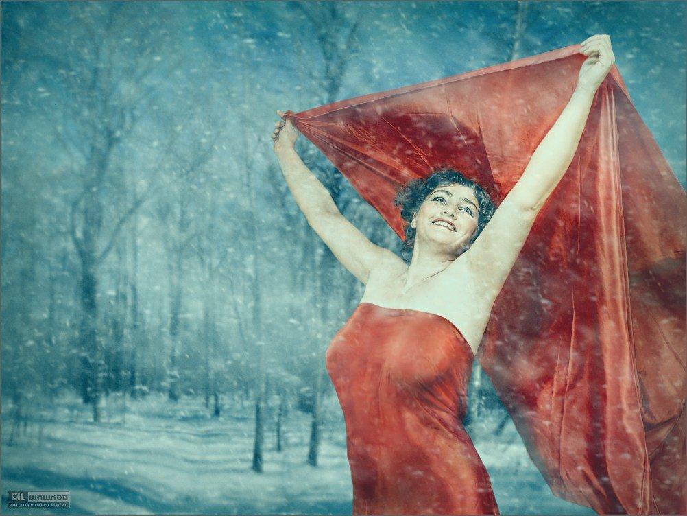 Зима - sergey shishkov