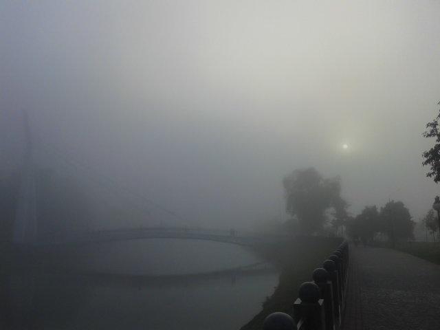 Мост в тумане - Александр Сальтевский