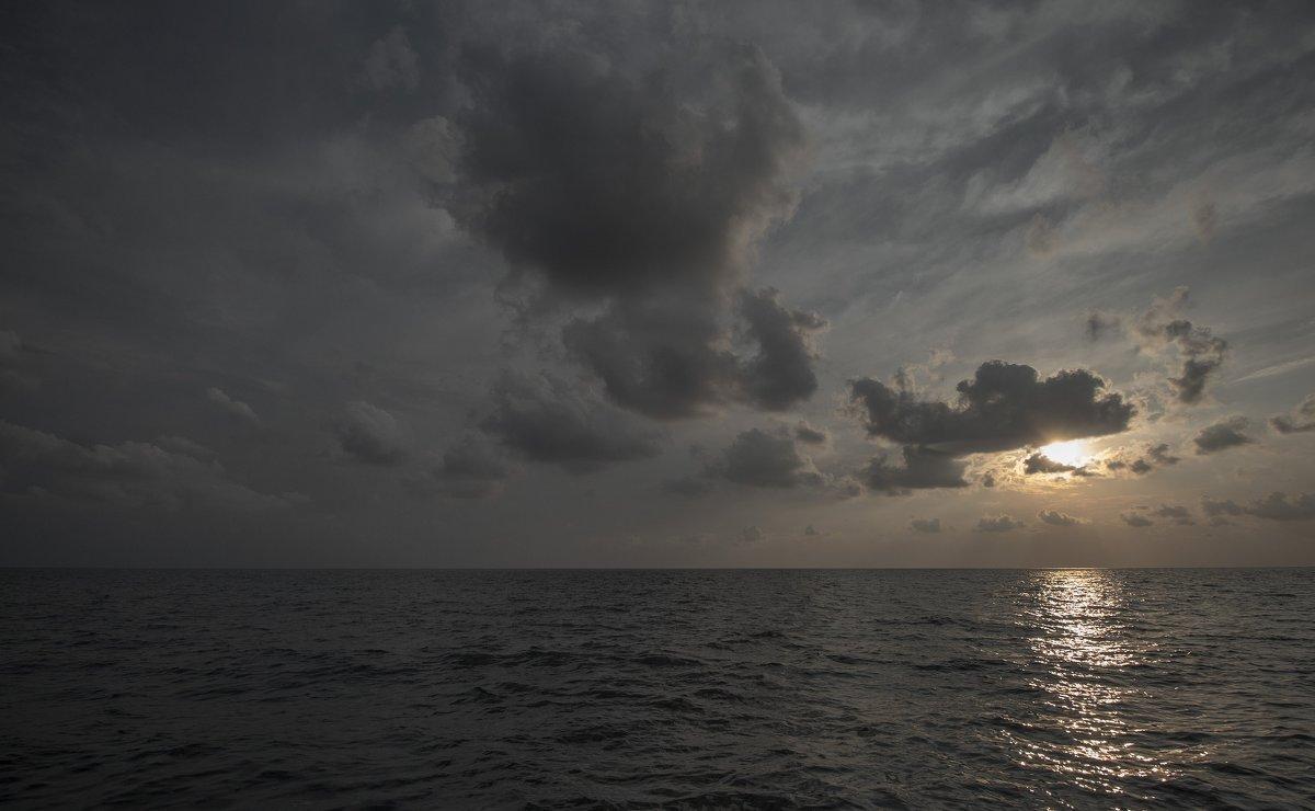 Немного холодного моря - Илья Сигунов