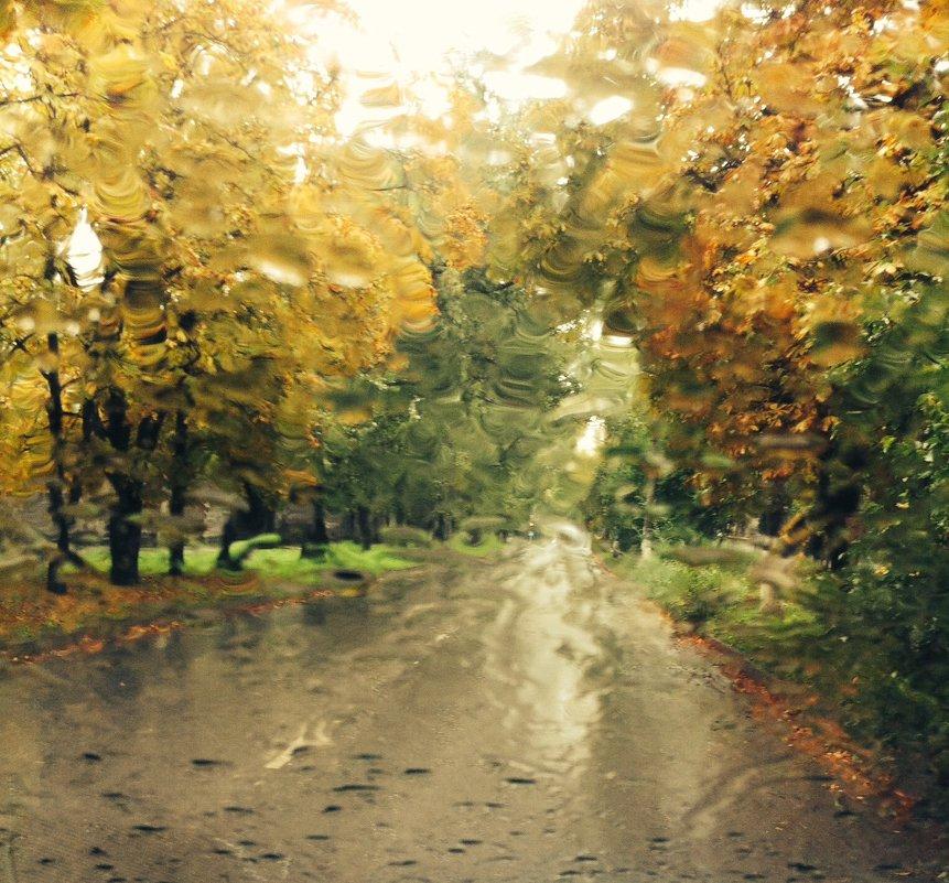 Я тебя люблю осень..!!)) - Мария
