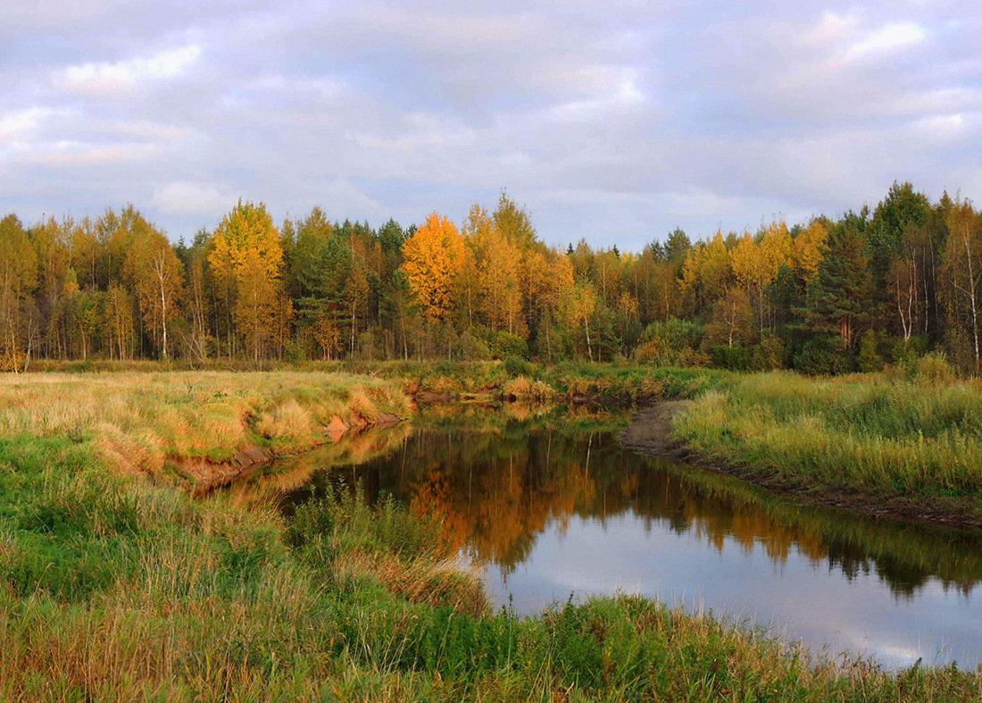 Осень золотая в зеркале реки - Павлова Татьяна Павлова