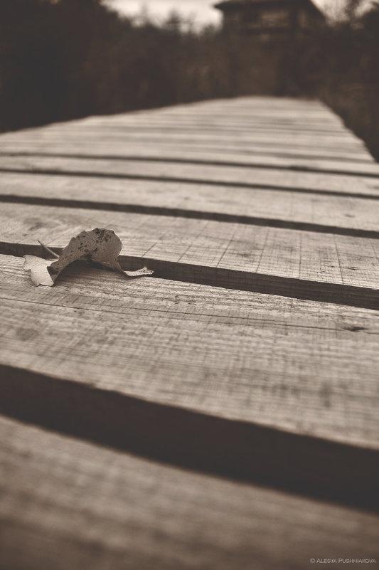 Память избирательна - хранит плохие воспоминания вместо хороших. А нужно наоборот... - Алеся Пушнякова