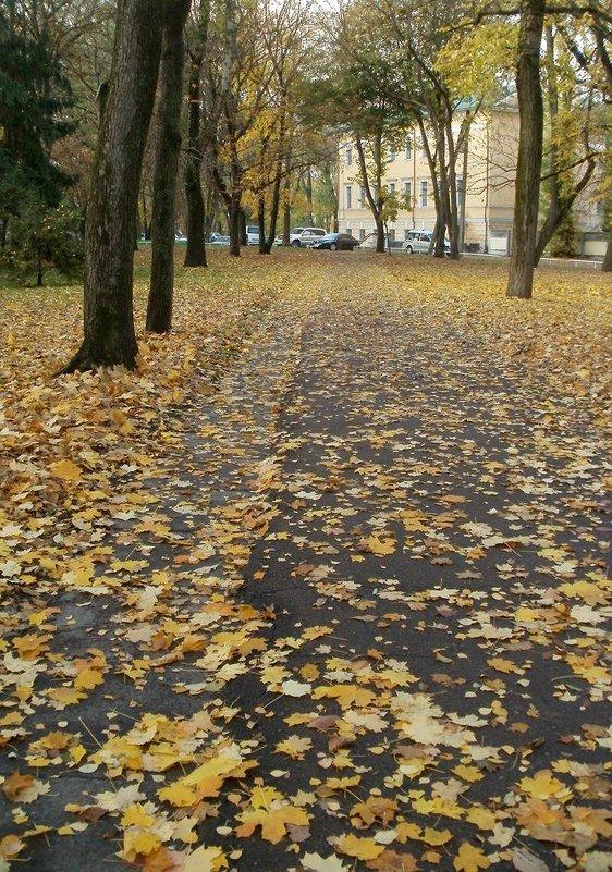 Осенняя дорожка - Сергей Тарабара