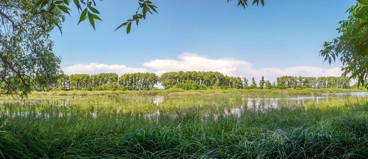 У озера - Сергей Тарабара