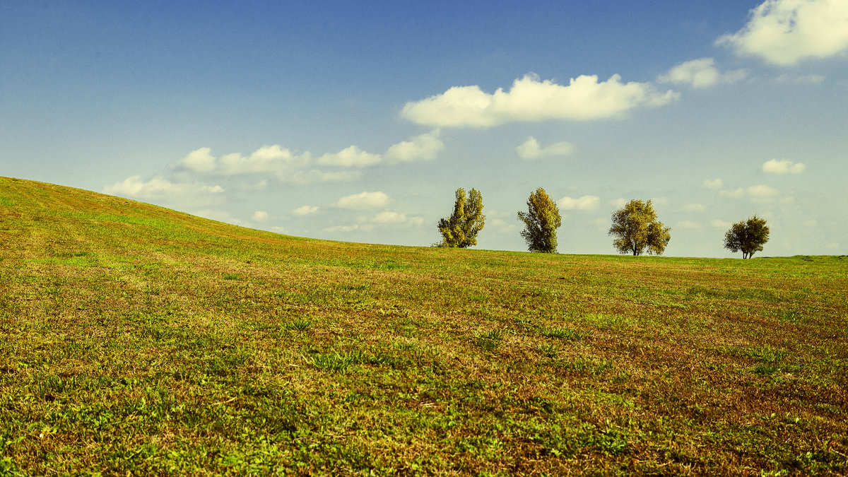 Windows XP - Вадим