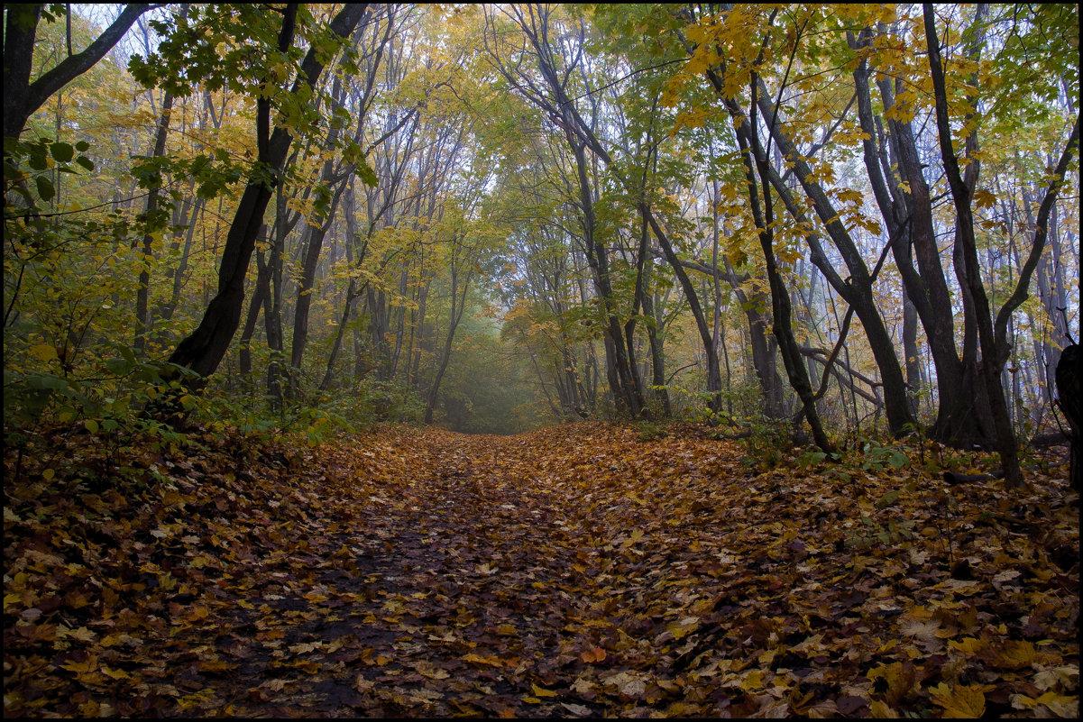 Осень - Алексей Патлах