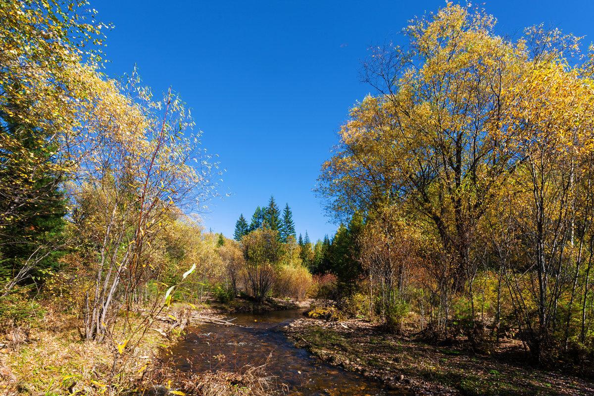Малые реки Сибири - Анатолий Иргл