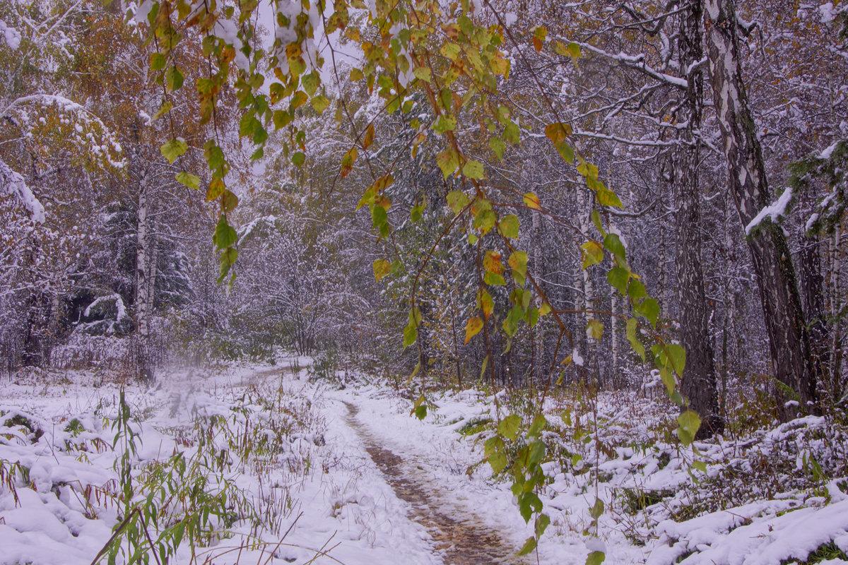 Первый снег---11 - Владимир Холодный