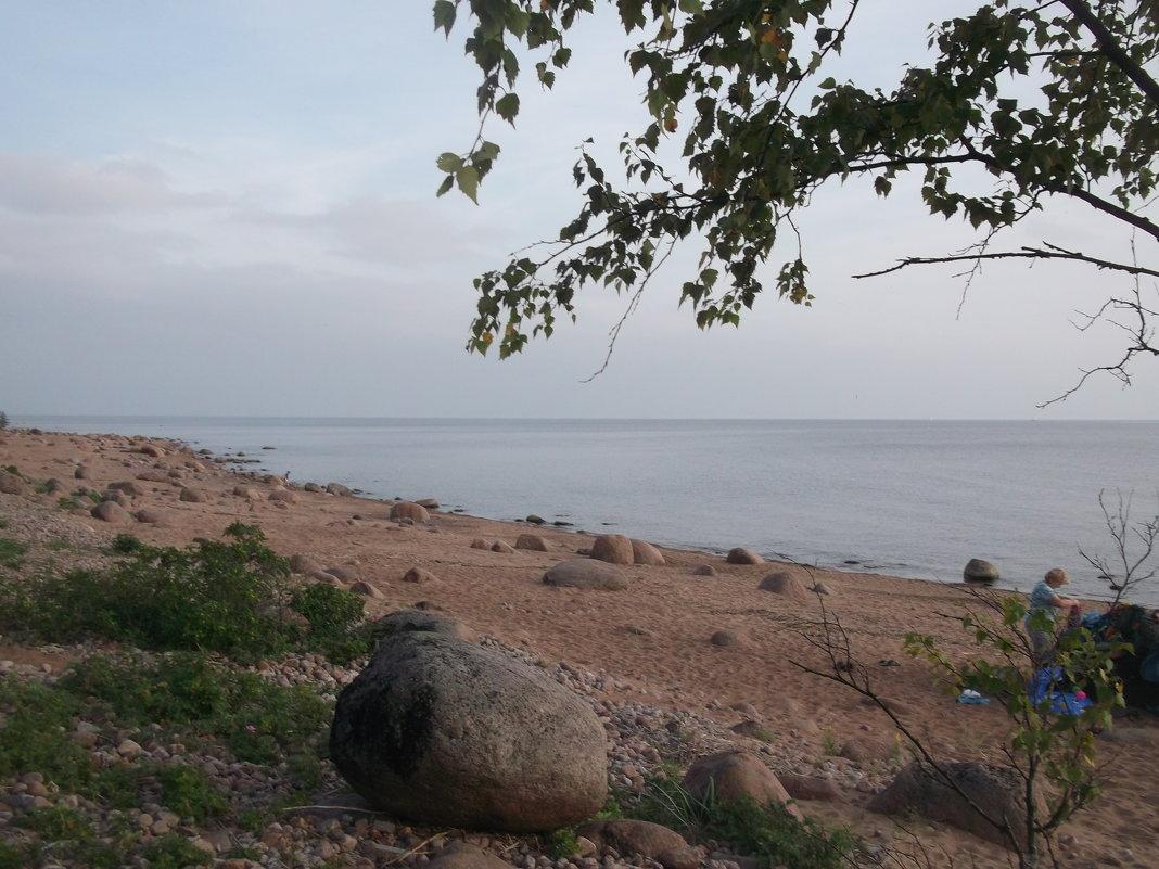 Вид на залив - Svetlana Lyaxovich
