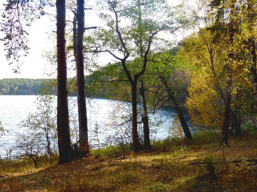 Залив озера Кисегач - Александр Садовский