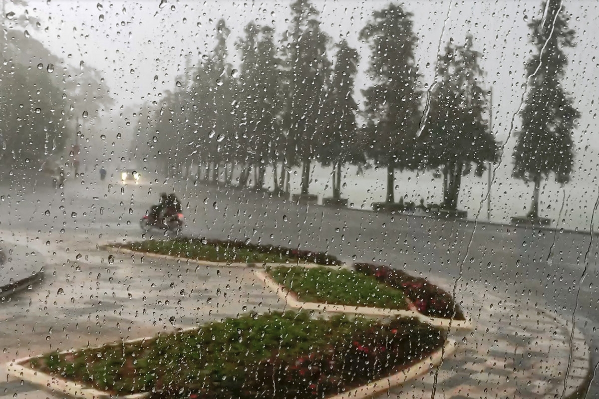 Шел дождь,автобус ехал...Далат. Вьетнам. - Татьяна Калинкина
