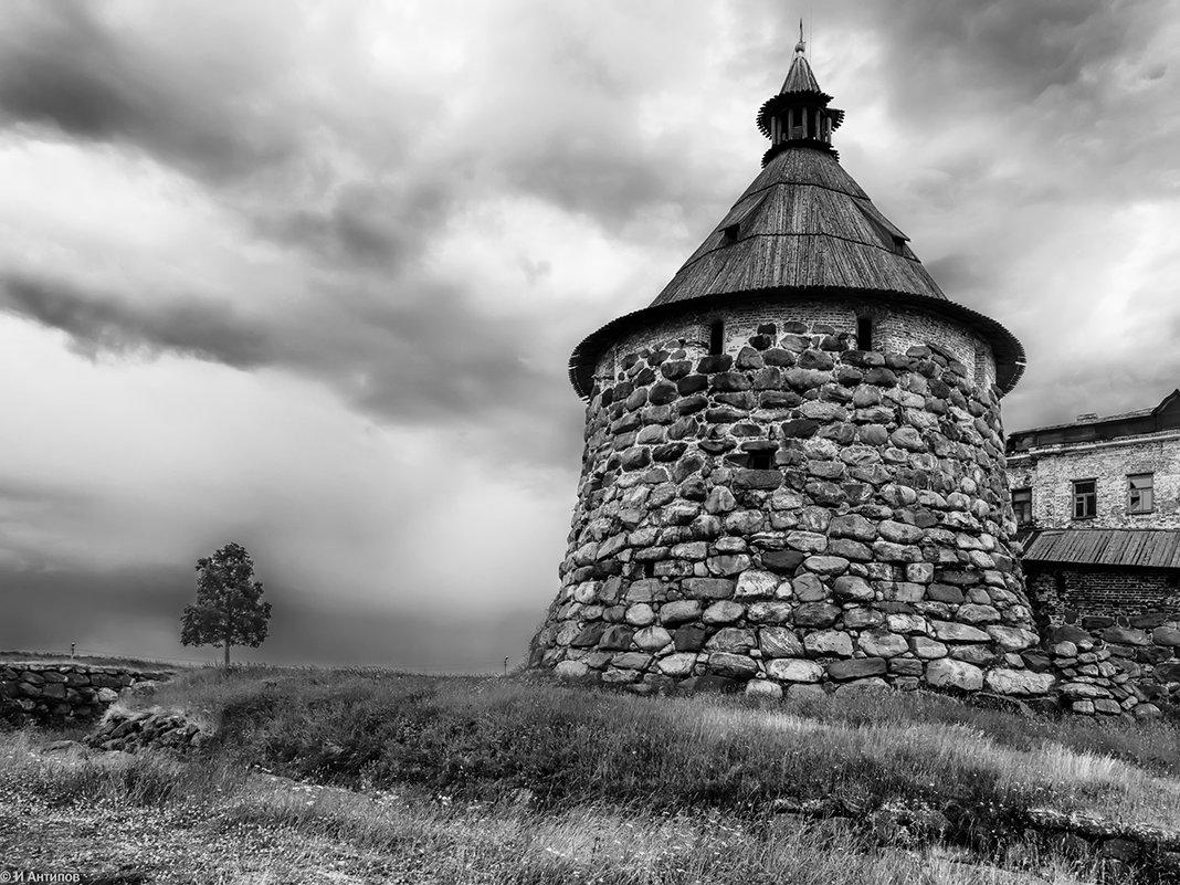 Всем ветрам назло - Igor Antipov