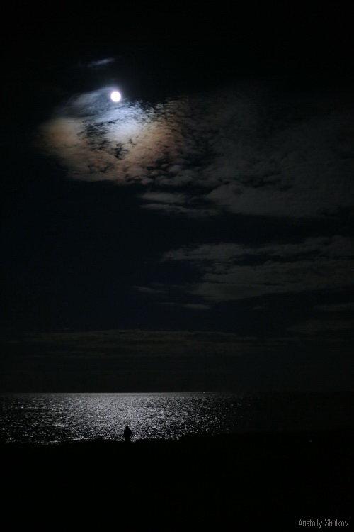 Лунная мелодия - Анатолий Шулков