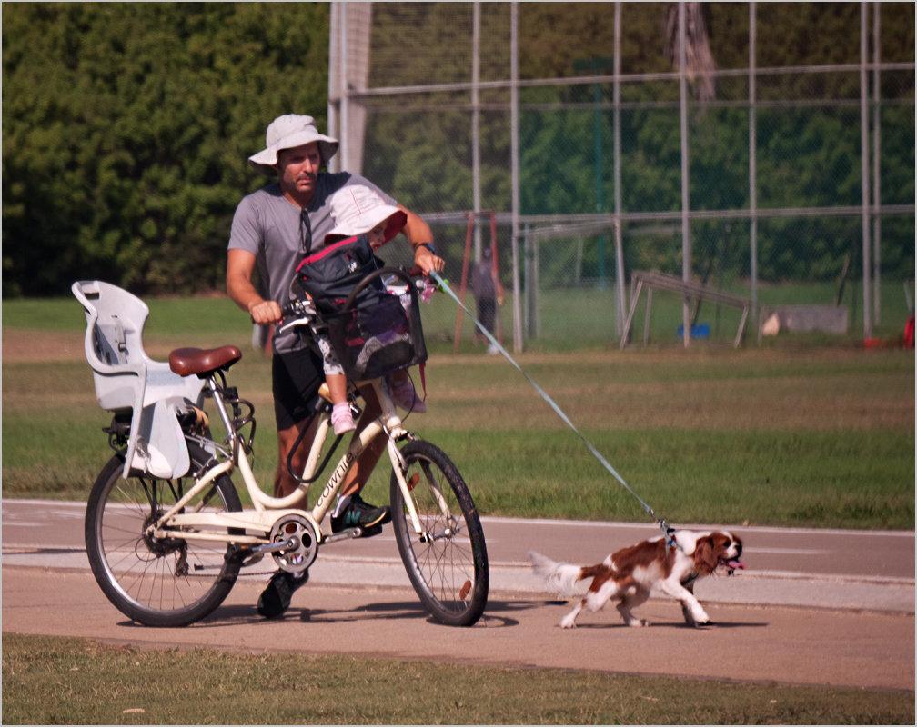 """Мир велосипеда-10 или """"Ездовая лаечка"""" - Lmark"""