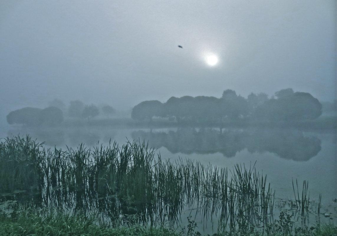 синий туман - Елена