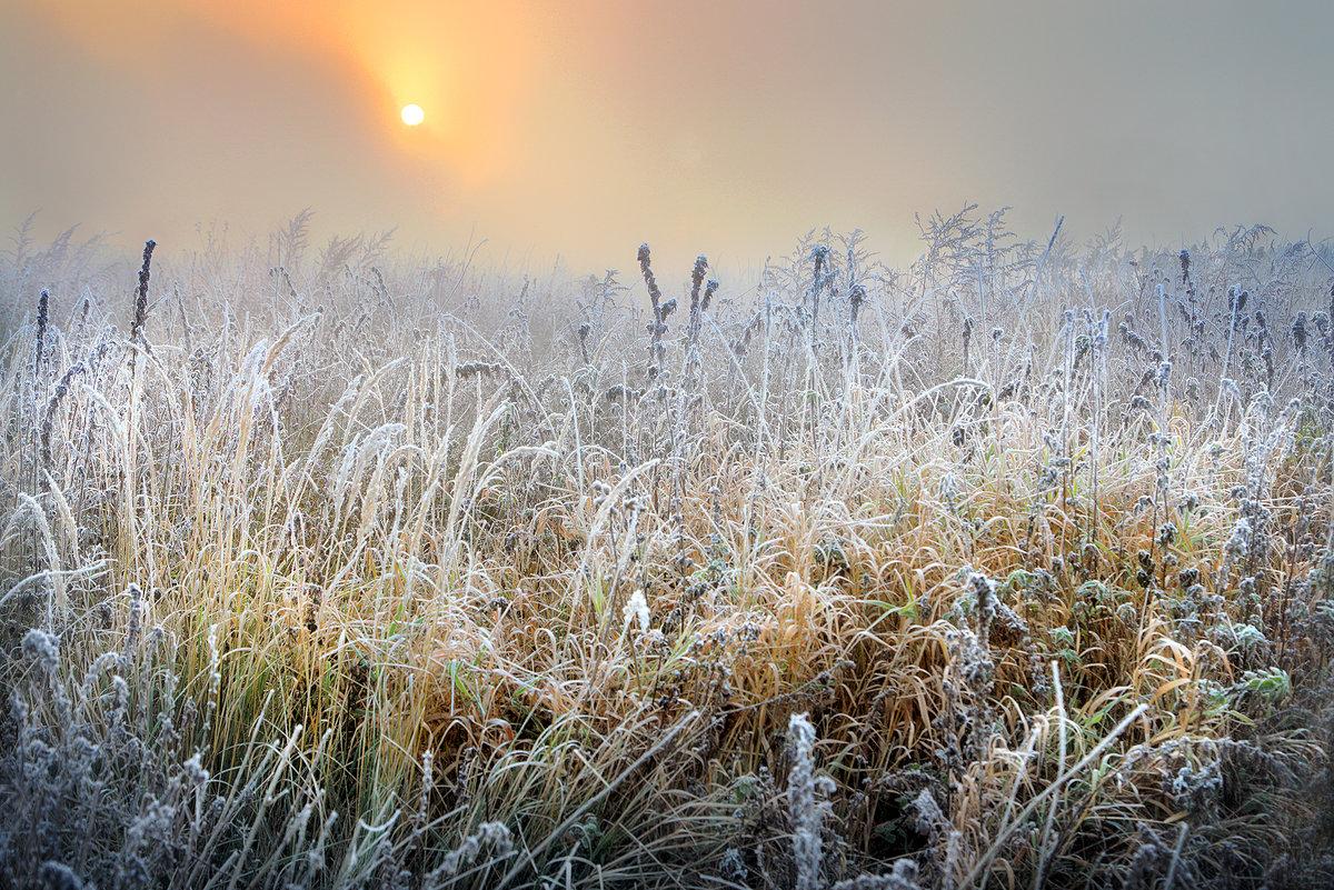 Солнцу навстречу....3 - Андрей Войцехов