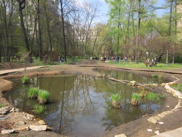 Пруд в ботаническом саду - Дмитрий Никитин