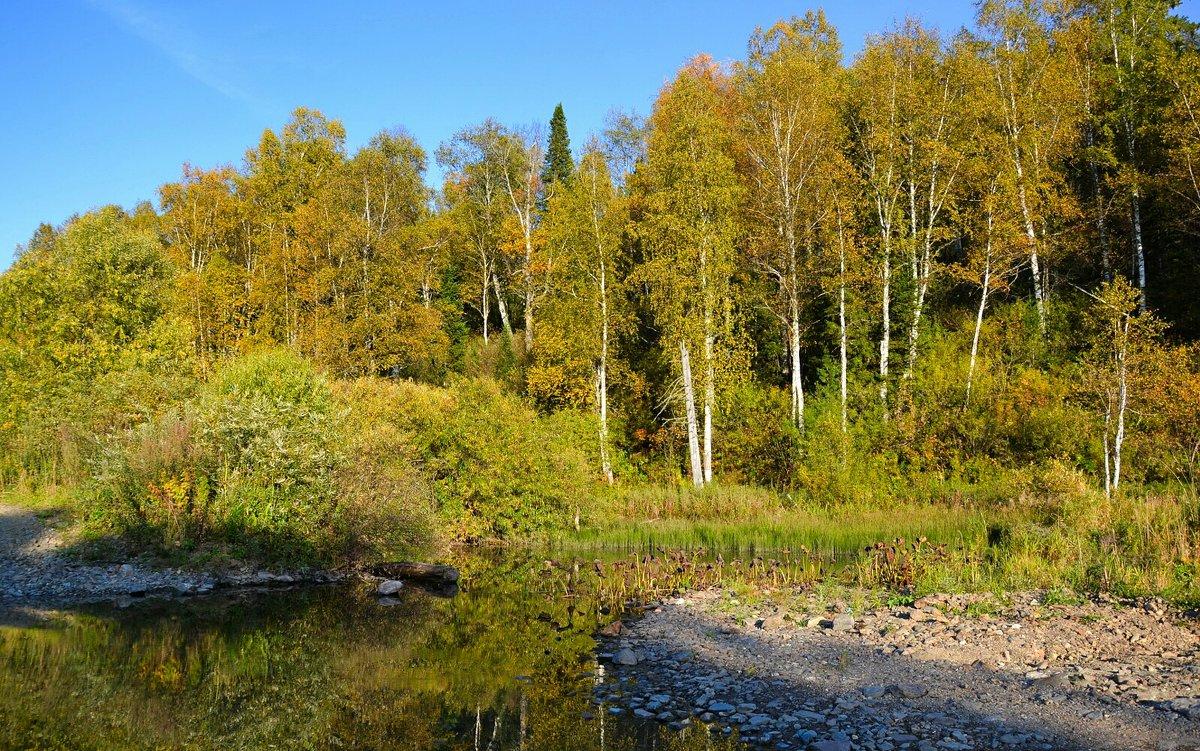 Осень в Горной Шории - Милешкин Владимир Алексеевич
