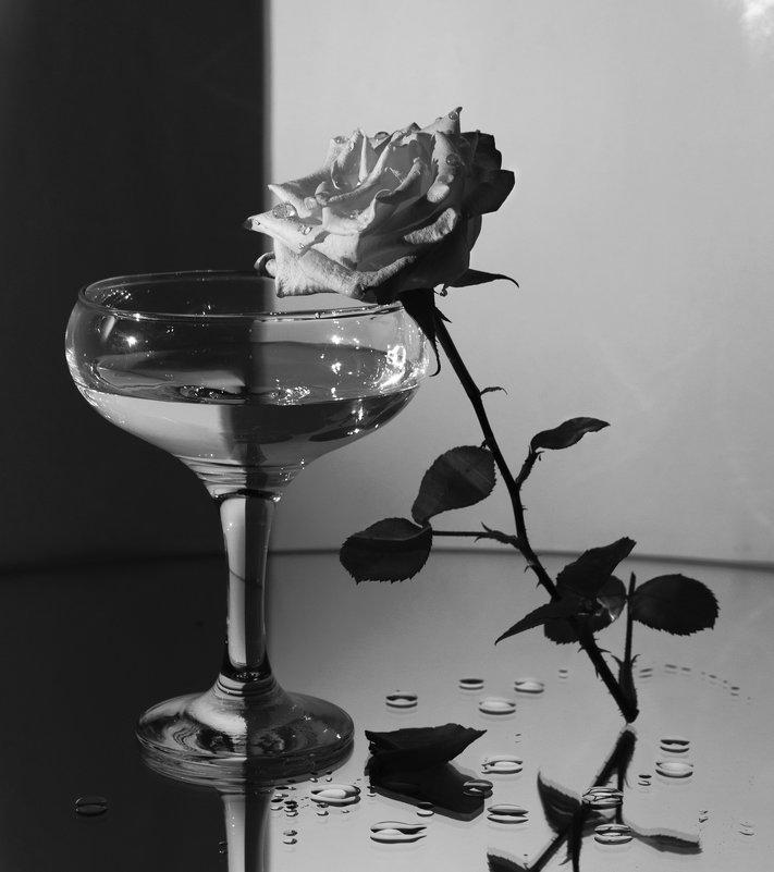 Можно забыть тех, с кем вместе смеялся, но никогда не забыть того, с кем вместе плакал. ( Джубран Х) - Marion