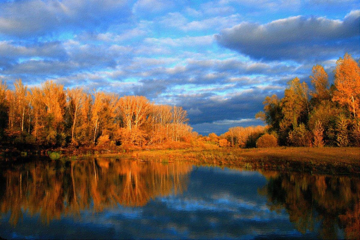 Ты какого цвета, осень ? Цвета грусти - неба просинь ... - Евгений Юрков