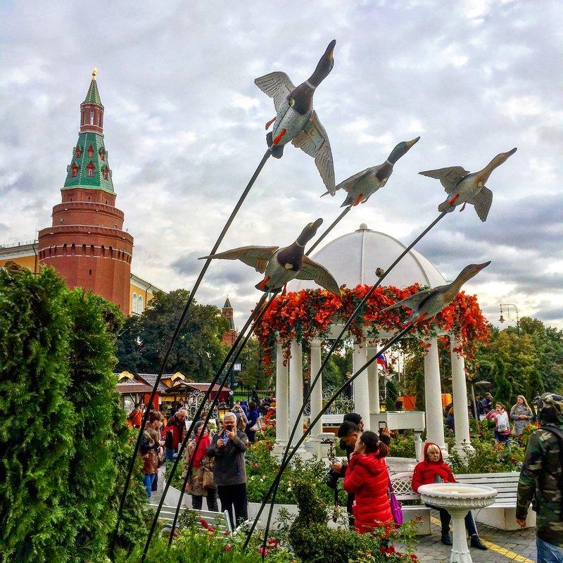 Осень-птицы на юг полетели! - Константин Поляков