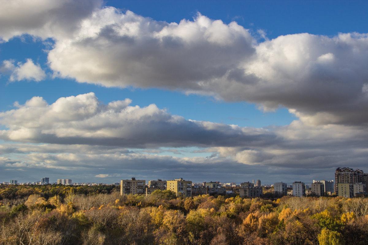 Небо над городом - Elena Ignatova