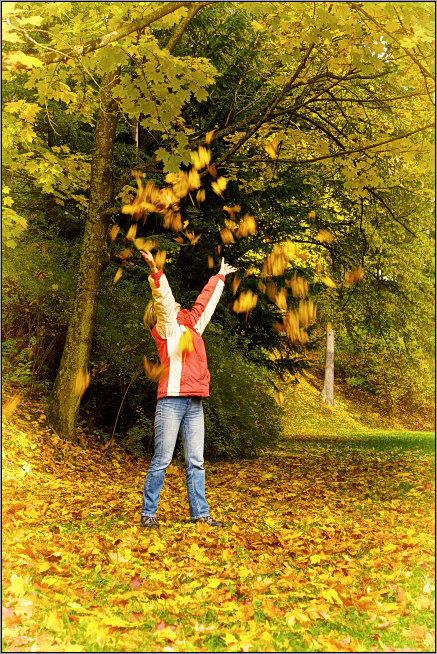 уже начали падать листья с деревьев - Jiří Valiska