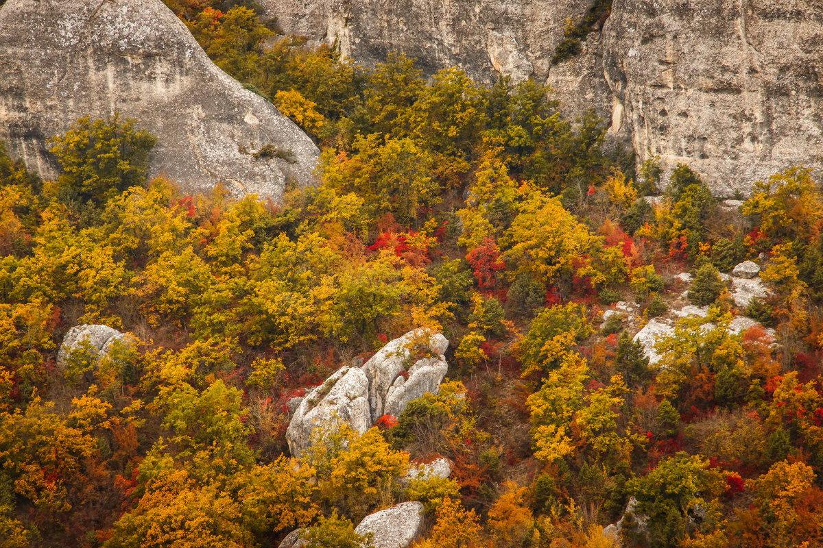 Осень в горах - Nyusha