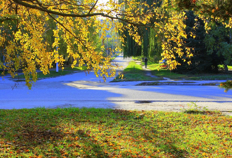 Осень скверы украшает позолоченной листвой. - Валентина ツ ღ✿ღ