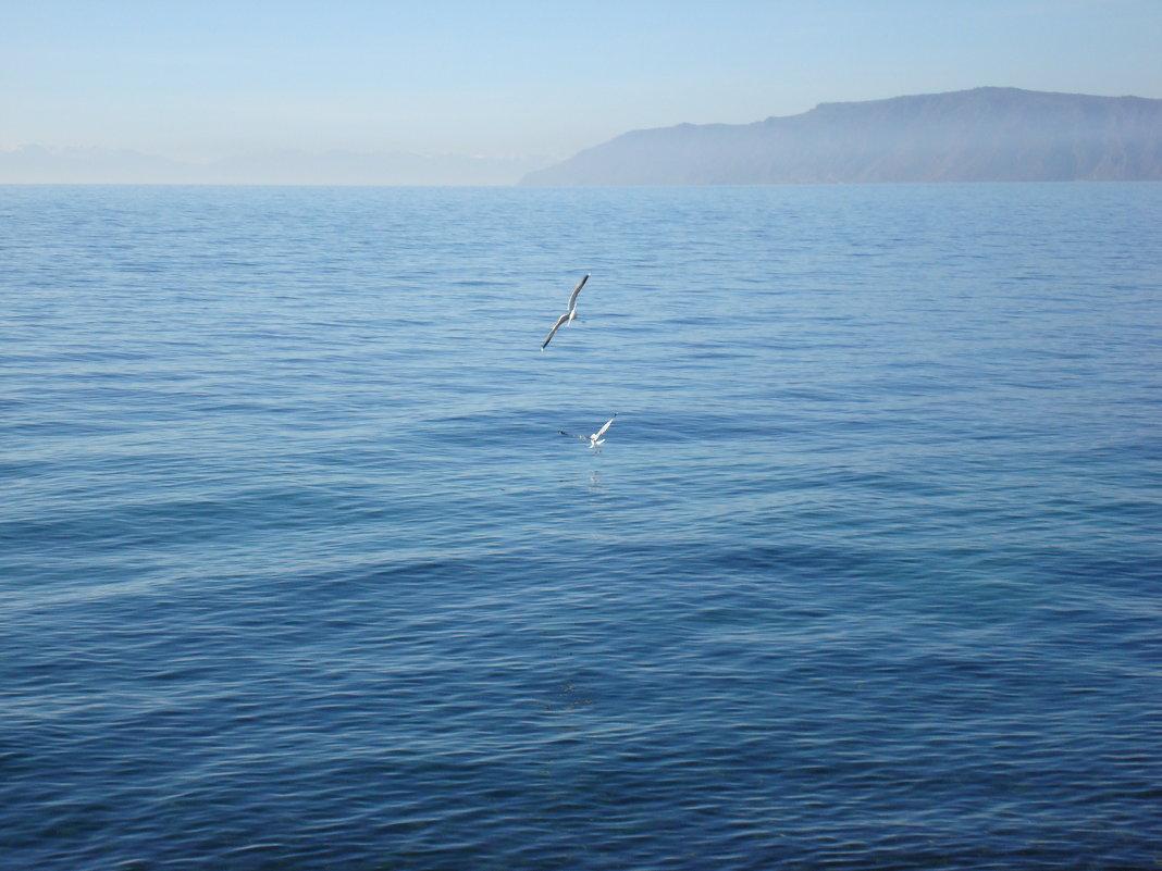 чайки над Байкалом - Татьяна