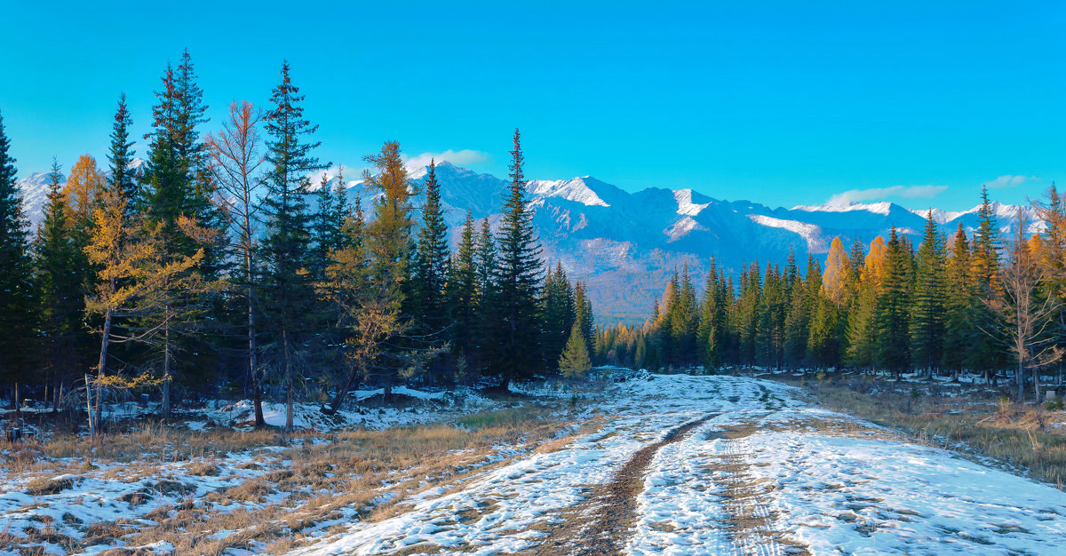 Дорога в горы - Анатолий Иргл