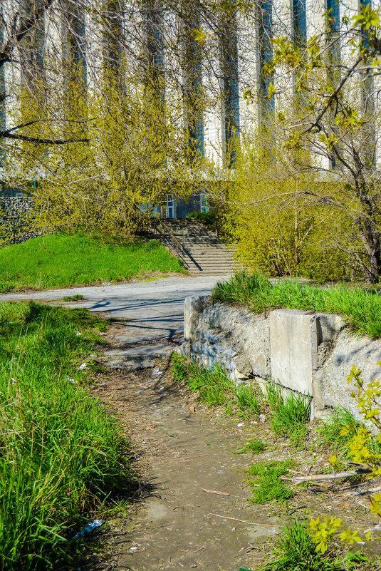 дорожки к лестнице - Света Кондрашова